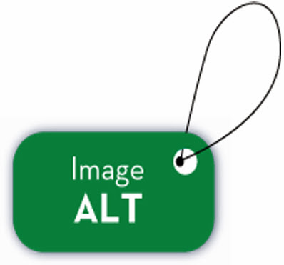 Add Alt Tag For Images
