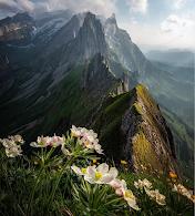 Schönheit der Landschaft