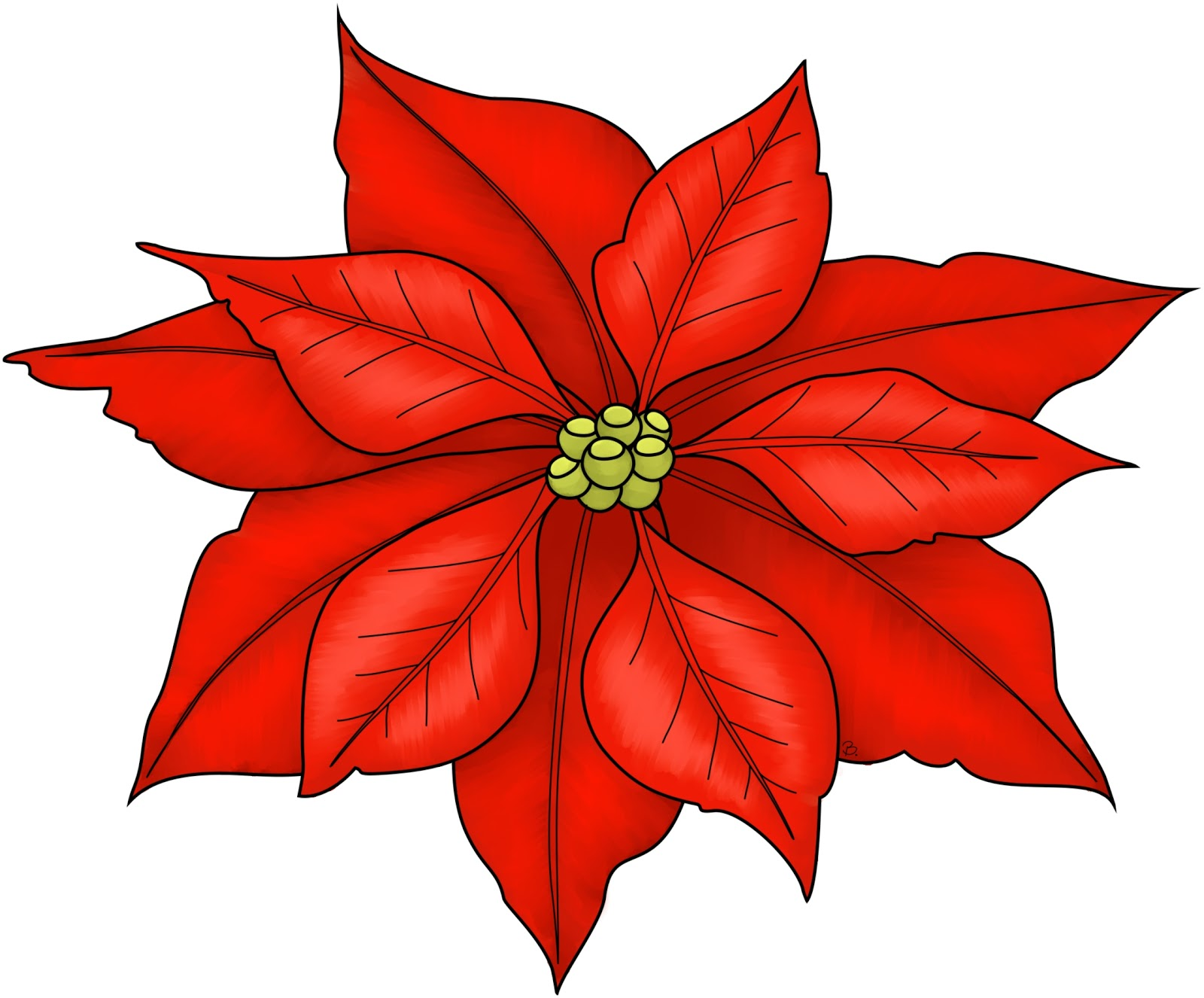 Poinsettia Coloring Page Poinsettia freebie