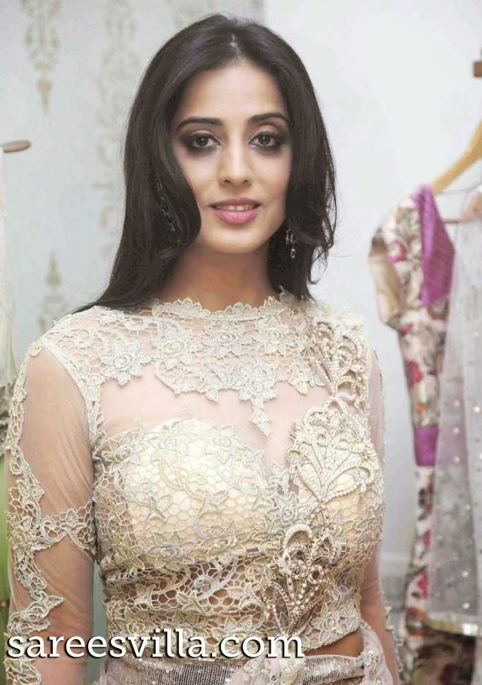 Actress Mahi Gill in designer blouse
