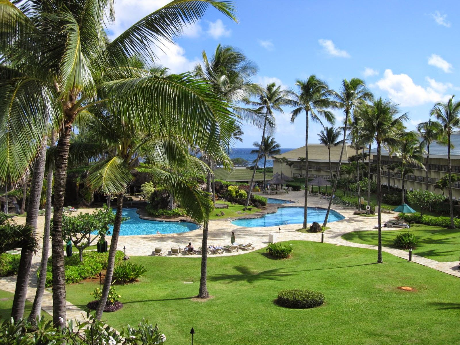 kauai real estate for sale just listed kauai beach