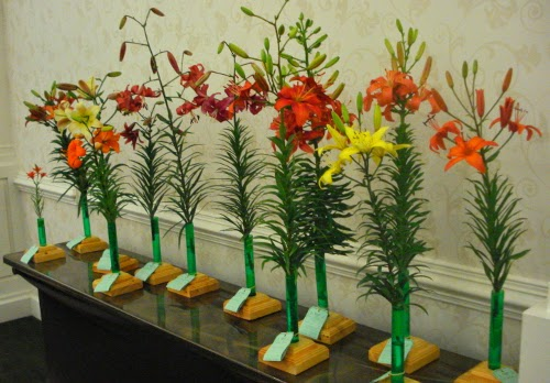 Horticulture Entries for 2014 NALS Show