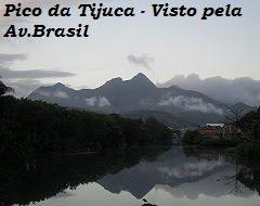 Caminha na Trilha-Pico da Tijuca