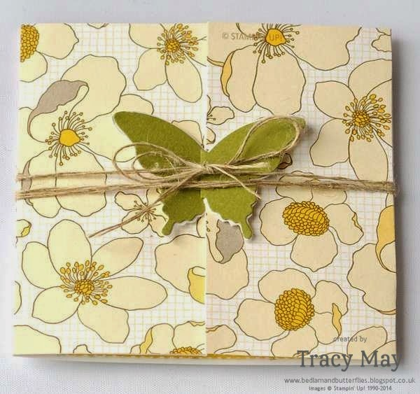 stampin up independent demonstrator Tracy May card making ideas butterflies