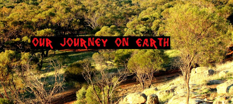 Our Journey on Earth