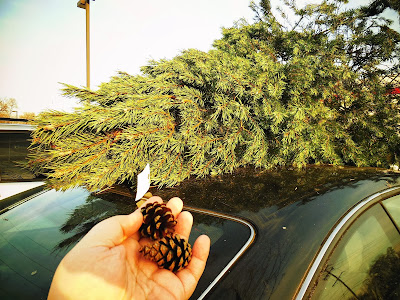 It was pre-decorated with authentic pinecones! ;)