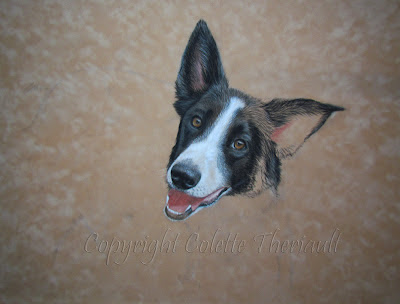 Pet Portraits by Colette Theriault