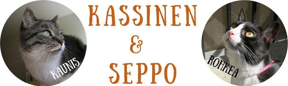 Kassinen ja Seppo