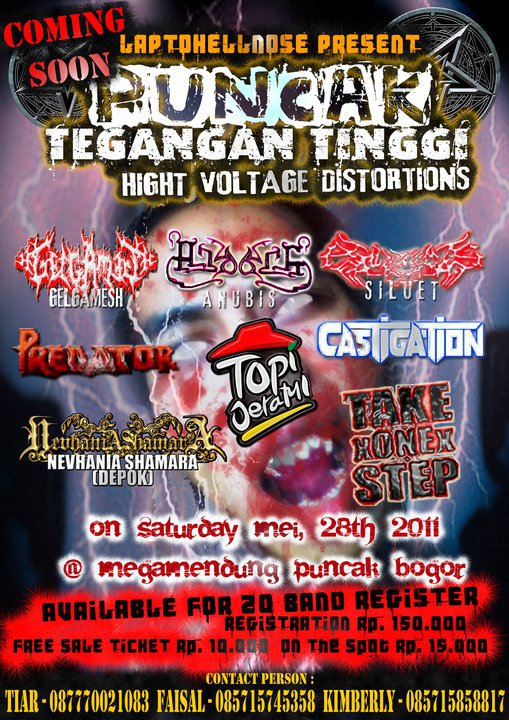 PUNCAK TEGANGAN TINGGI HIGHT VOLTAGE DISTORTIONS