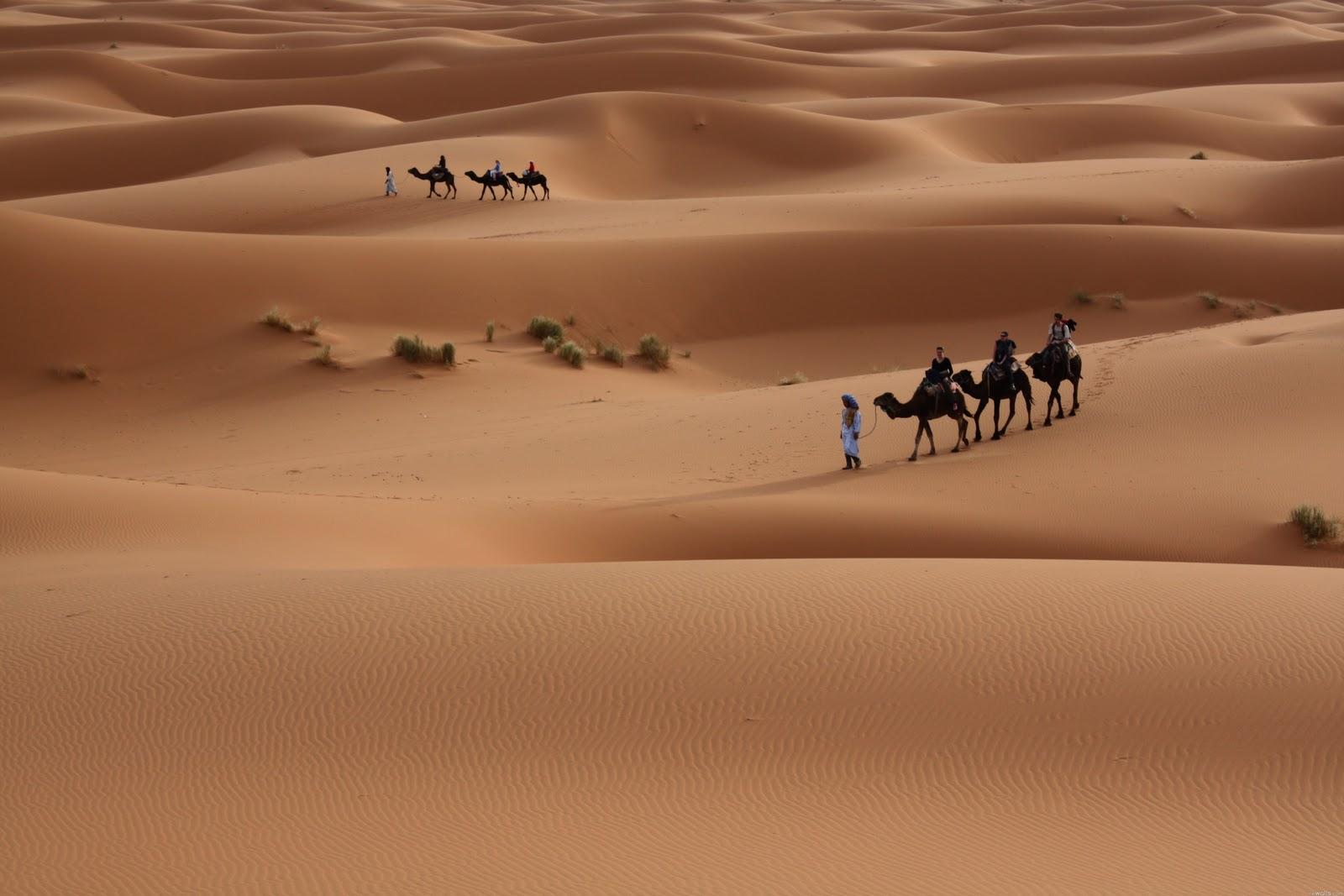 http://4.bp.blogspot.com/-2ZrpFKaE6pI/T-MCkapq5QI/AAAAAAAAGOM/nVorxD1_pbU/s1600/Middle-East-Desert-HD-Wallpaper.jpg