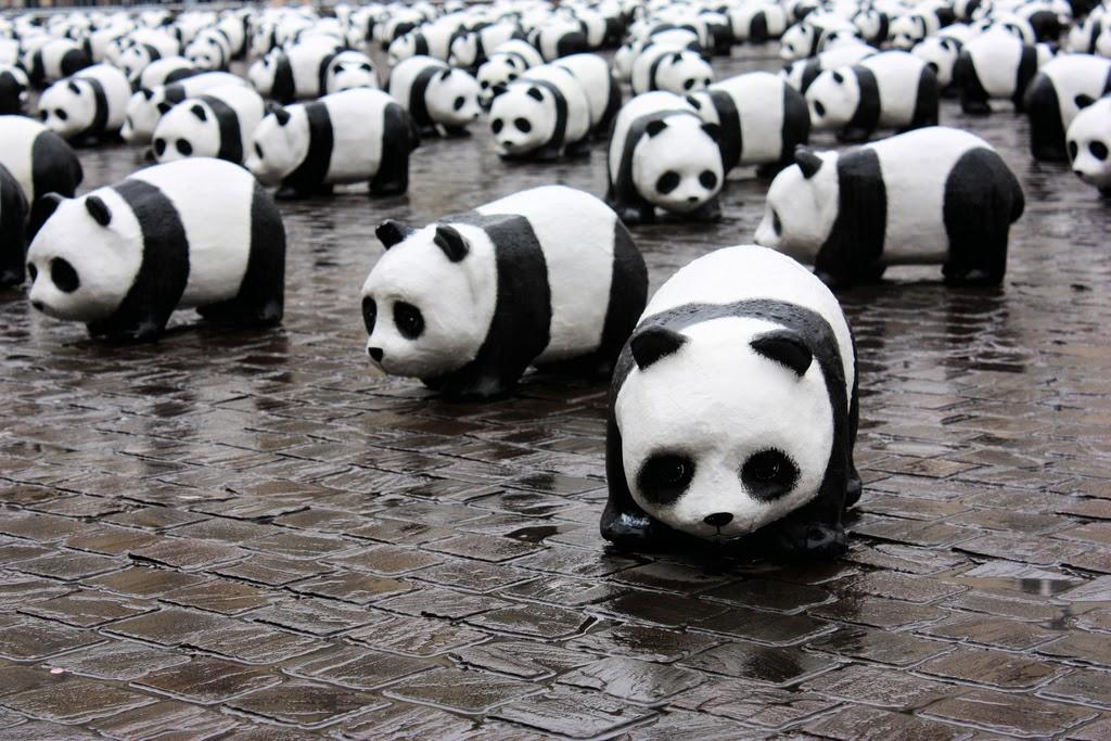 Google Panda 4.0 ya está aquí