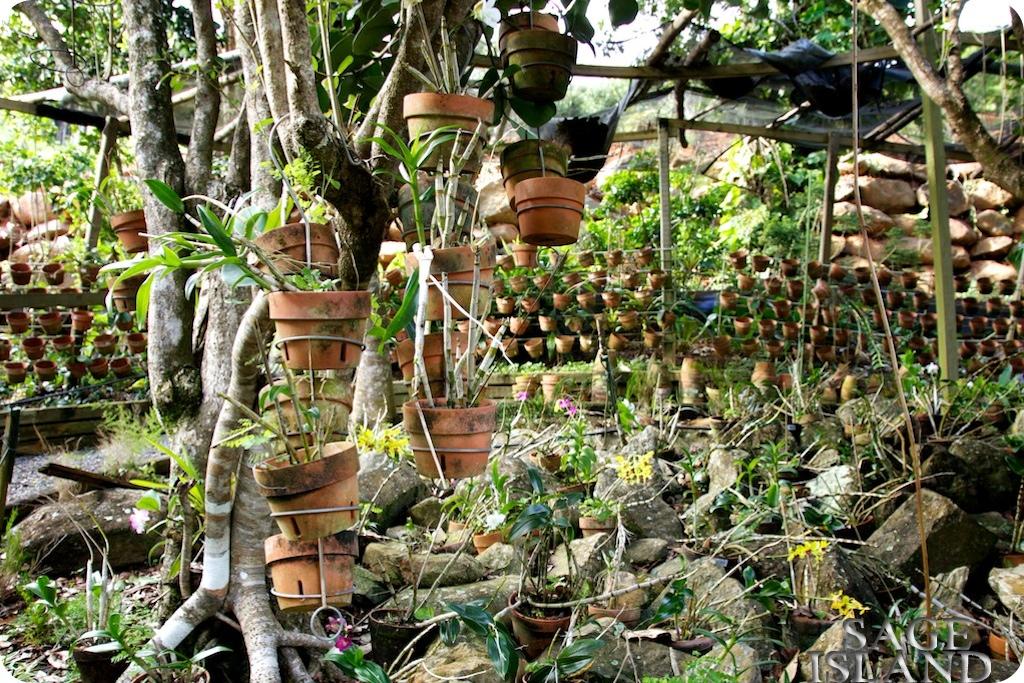 Papillote Tropical Gardens Secret Tropical Garden on st