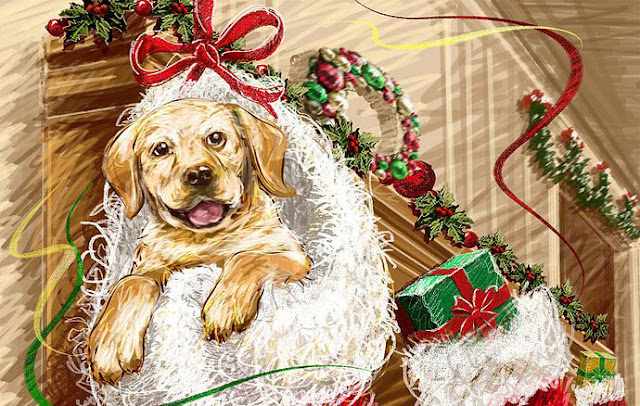 christmas Art illustration XMAS photos