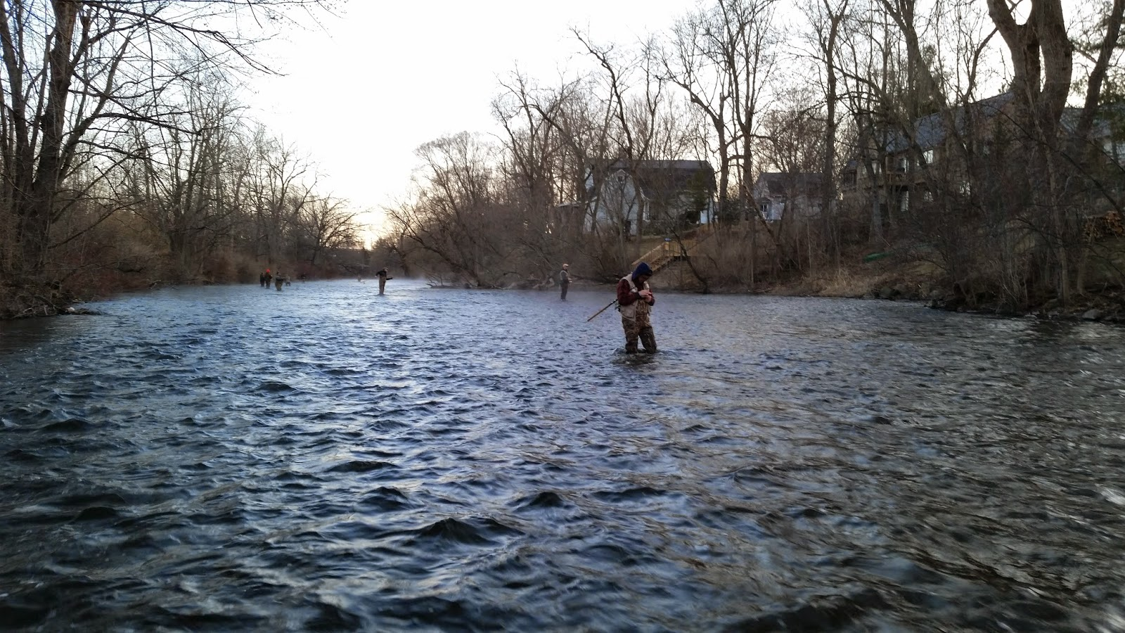 michigan steelhead report 2015 04 05