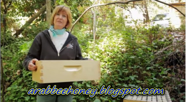 Video-Beekeeping for Beginners -- Hive Set Up