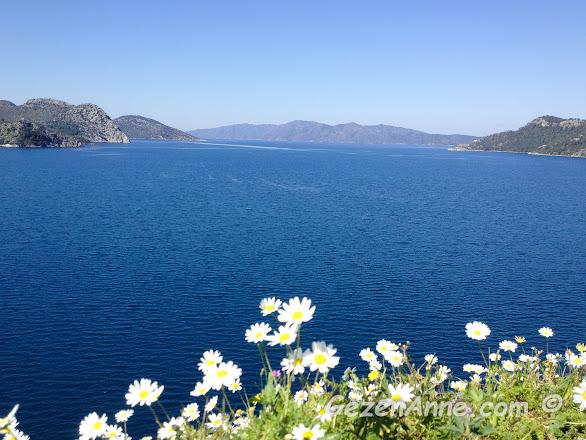 papatyaların yeni yeni açtığı bahar günlerinde lacivert Marmaris denizi ve koyları