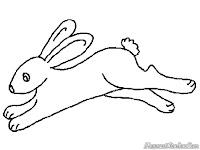 Mewarnai Gambar Seekor Kelinci Liar Melompat Dan Berlari Lari
