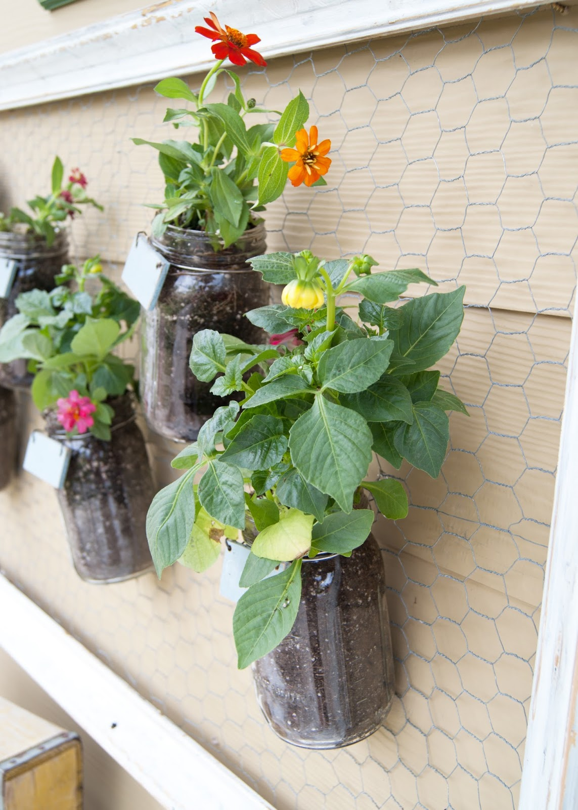 DIY Mason Jar Wall Garden