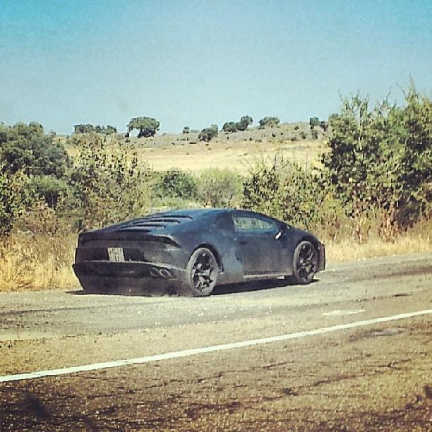 2013 - [Lamborghini] Huracán LP610-4  - Page 2 Lamborghini-cabrera-gallardo-spy-shot-testing+(1)
