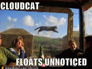 your weekly LOLcat