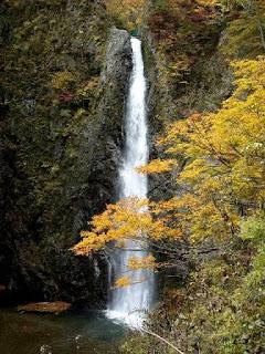 Shirakami-Sanchi Tohoku, Japan (Best Honeymoon Destinations In Asia) 7