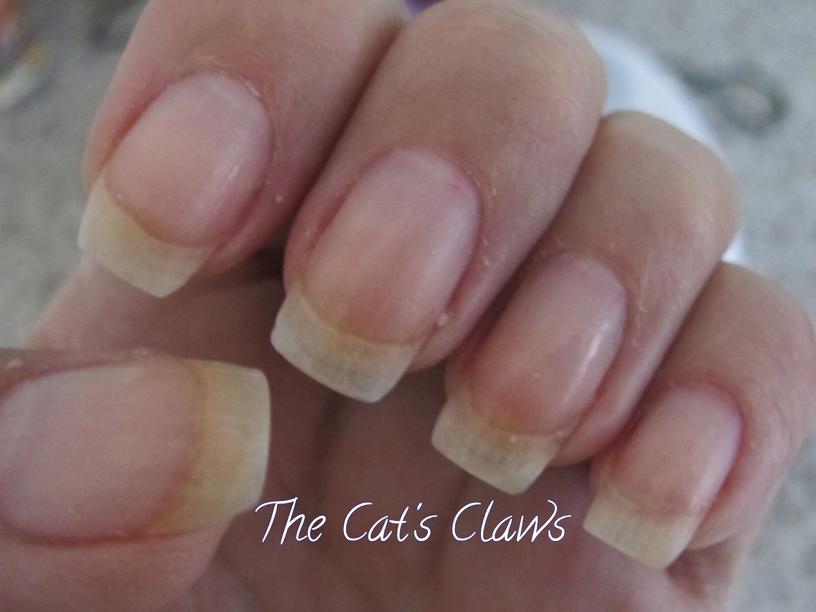 The Cat\'s Claws: Qutique Gel Nails = Perfection!