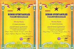 Penghargaan Rekor Muri