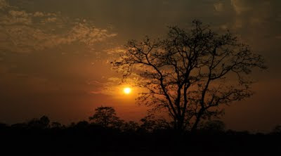 Sunset from Buxa - Jainti, Buxa Tiger Reserve, Dooars