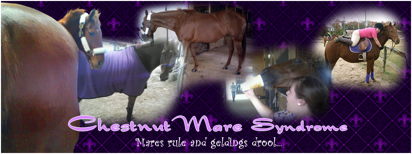 Chestnut Mare Syndrome