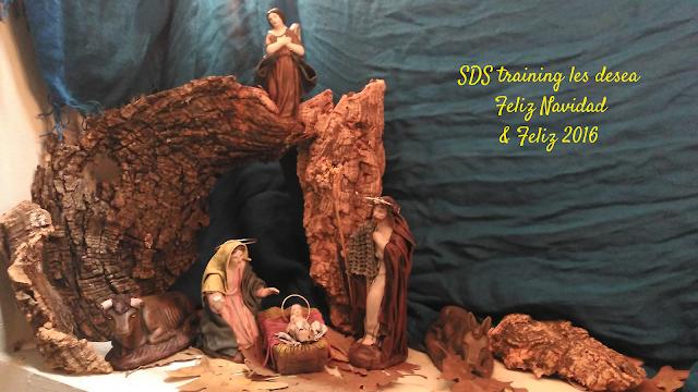 Feliz Navidad & Feliz 2016. Los mejores deseos de SDS training