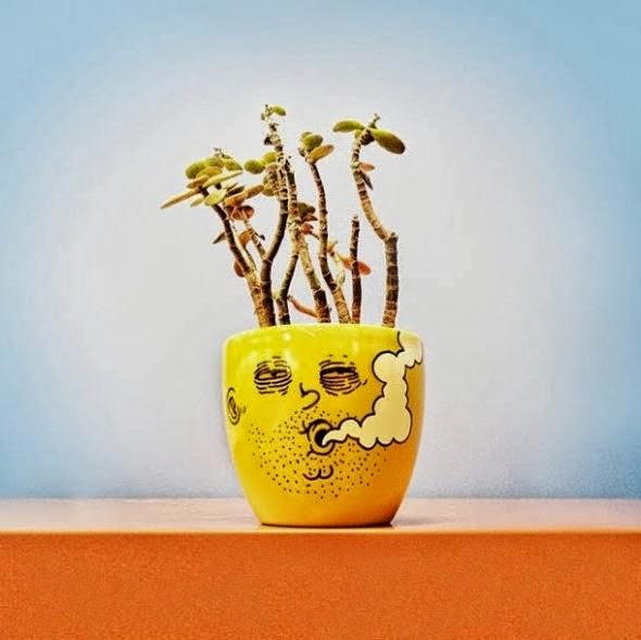 imagens criativas - desenhos - coco maconheiro