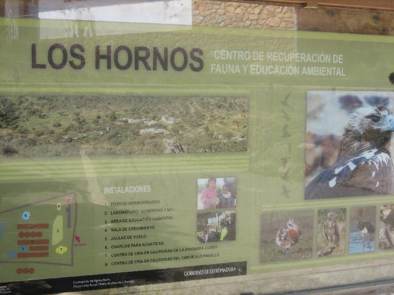 Los Hornos