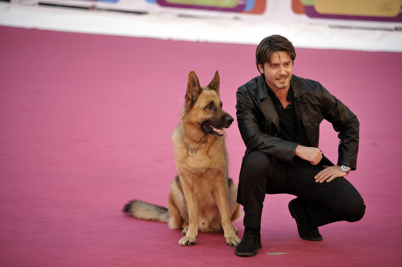 Avant premi re au roma fiction fest rex chien flic l 39 actualit avec rexchienflic net
