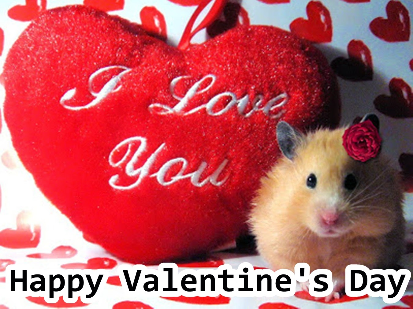 i love you heart valentine day wallpapers.jpg