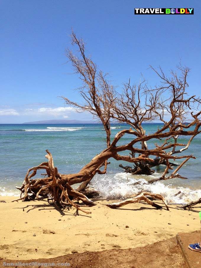Granny's Beach, Lahania, Maui, Hawaii. photo by Annaliese Morgan for Travel Boldly