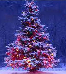 Contoh desain pohon natal, desain pohon natal, contoh gambar pohon natal, gambar pohon natal
