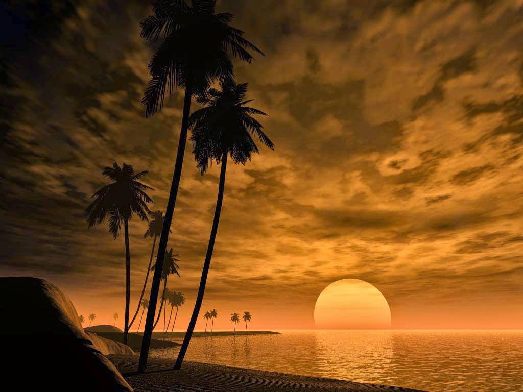 Sun set Photo