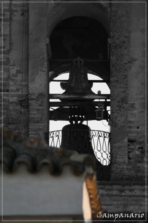 SERIE FOTOGRAFÍAS B/N - COLOR