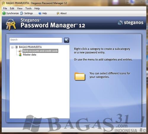Steganos Password Manager 12 Full Serial 2
