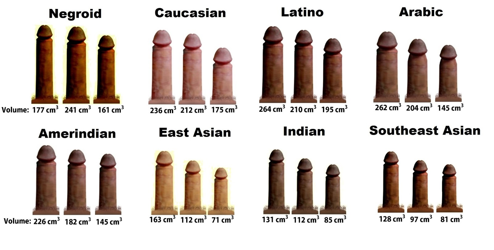 Naked men average penis size