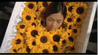 YUI in sunflower coffin