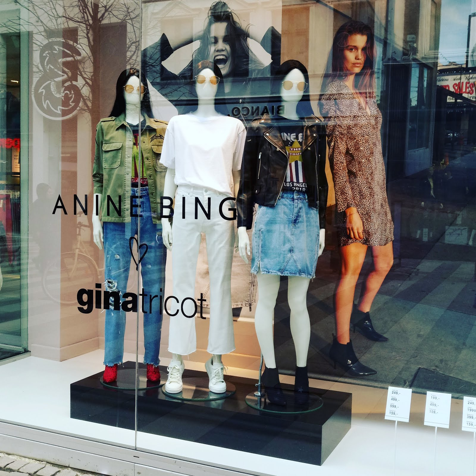 Anine Bing for Gina Tricot