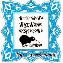 Wyróżnienie Top5 w RapaKivi  29.04.