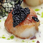 Scallops of the week