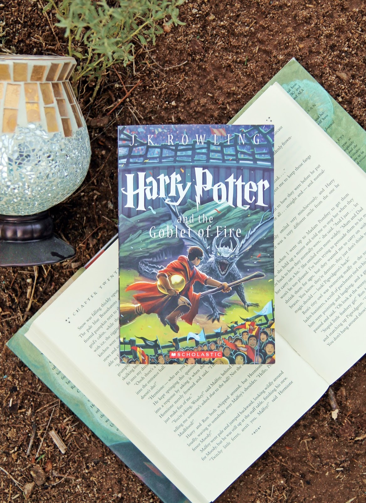 Harry Potter Book Club : Voguish at best harry potter book club the goblet of fire