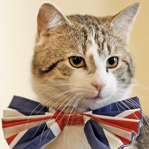 Glosario sobre la política en Reino Unido Larry-Royal_feline