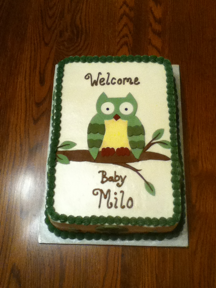 Bellissimo Specialty Cakes Owl Baby Shower Cake 613
