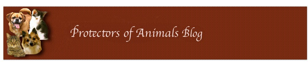 Protectors of Animals Happy Tails..