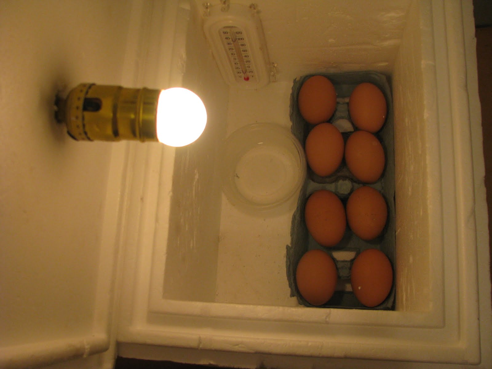 Egg Incubator Homemade Design 69