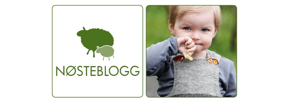 Nøsteblogg - Nøstebarns blogg
